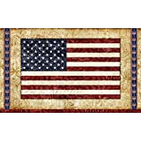 Quilting Treasures Home of the Brave American Flag Wall Hanging/Fabric Panel