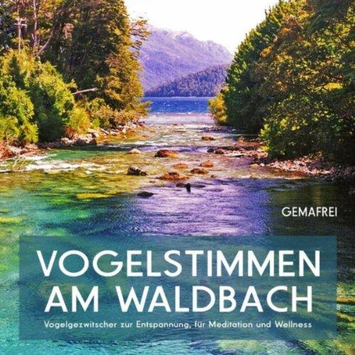 Vogelstimmen am Waldbach - Vogelgezwitscher zur Entspannung, für Meditation und Wellness (gemafrei)