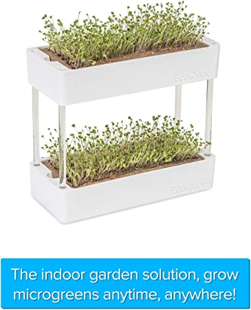 Amazon Com Ecoqube Sprout Easy And Affordable Herb Garden