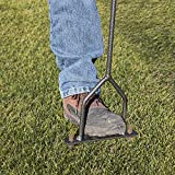 Lawn Coring Aerator, Manual Grass