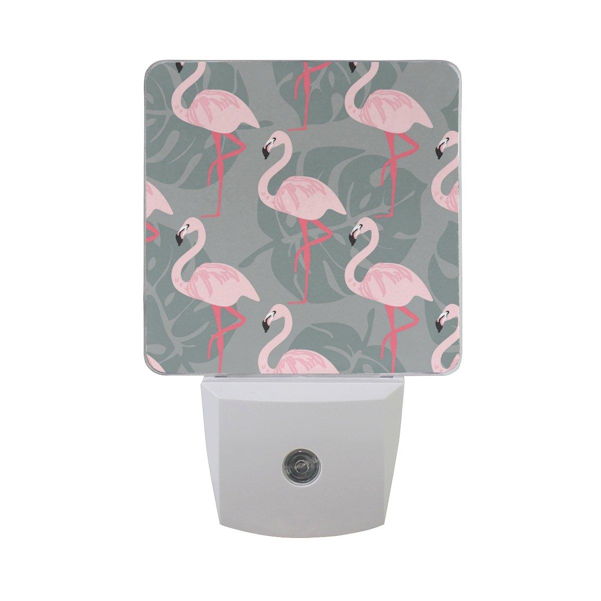 JOYPRINT Led Night Light Tropical Summer Flamingo Palm Leaves Pattern, Auto Senor Dusk to Dawn Night Light Plug in for Kids Baby Girls Boys Adults Room