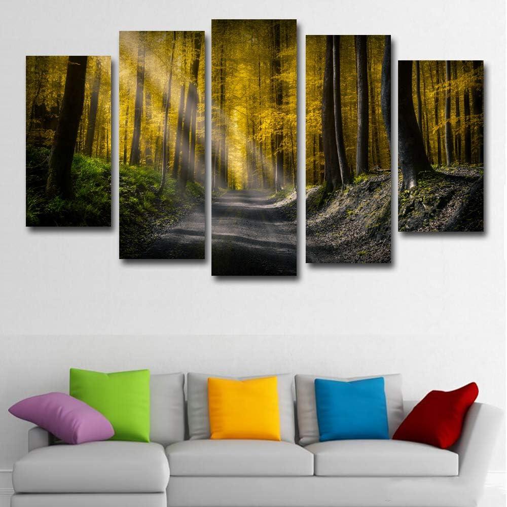 KANGZEDT Pintura sobre lienzo - 5 piezas 150*80CM Camino otoño bosque la luz del sol Cuadro en Lienzo - Abstracto Impresión de 5 Piezas Material Tejido no Tejido Impresión Artística Imagen Gráfica Dec
