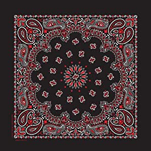Carolina Hav, A, Hank Paisley Bandanna, 22-Inch by 22-Inch, Black, Red, White