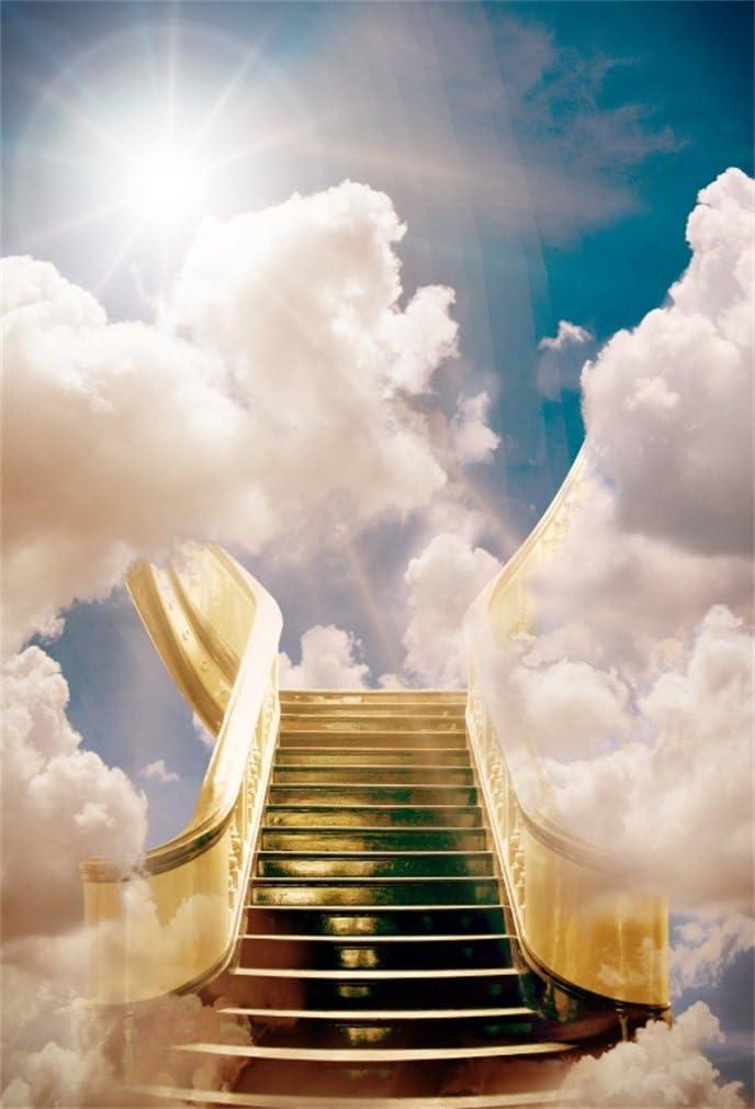 YongFoto 1,5x2,2m poliéster Fondo de Fotografia Soñador Cuento de Hadas Escalera al Cielo Sol Nube Blanca Telón de Fondo Fiesta Niños Boby Boda Adulto Retrato Personal Estudio Fotográfico Accesorios: Amazon.es: Electrónica