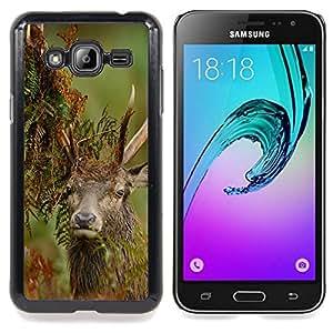 "Qstar Arte & diseño plástico duro Fundas Cover Cubre Hard Case Cover para Samsung Galaxy J3(2016) J320F J320P J320M J320Y (Divertido Macho majestuoso"")"