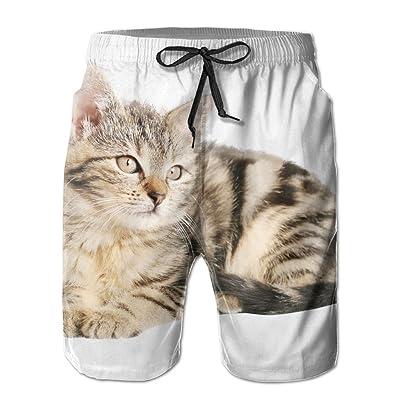 Men's Shorts Swim Beach Trunk Summer Cat Kitten Kitty Pet Casual Fashion Shorts With Pockets