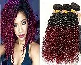 3 Bundles Brazilian Curly Weave Ombre Two Tone Black Burgundy 100G Original Human Hair 9A Cheap Jerry Curl Virgin Brazilian Hair (20 22 24)
