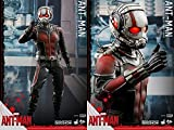 Hot Toys Marvel Ant-Man Scott Lang Paul Rudd 1/6 Scale 12