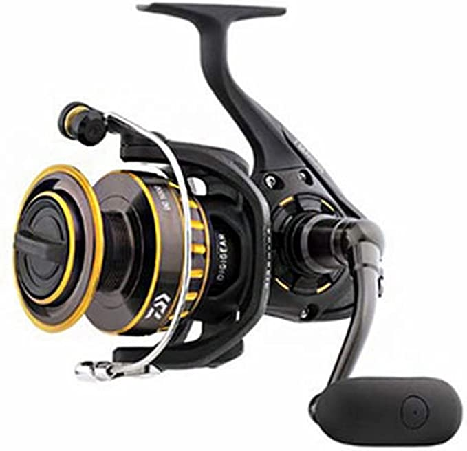 Best Spinning Reel: Daiwa Bg Spinning Reel