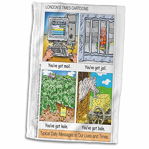 3dRose Londons Times Funny Silly Wordplay Cartoons - You ve Got Mail, Jail, Kale, and Bale - 15x22 Hand Towel (twl_3434_1)