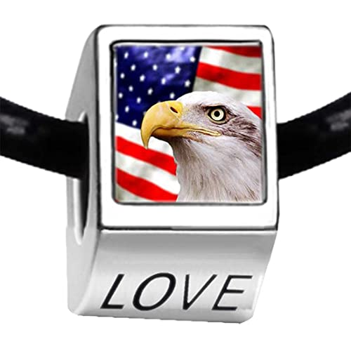 097566c53 Image Unavailable. Image not available for. Color: GiftJewelryShop Silver  Plated American flag bald eagle Photo LOVE Charm Bead ...