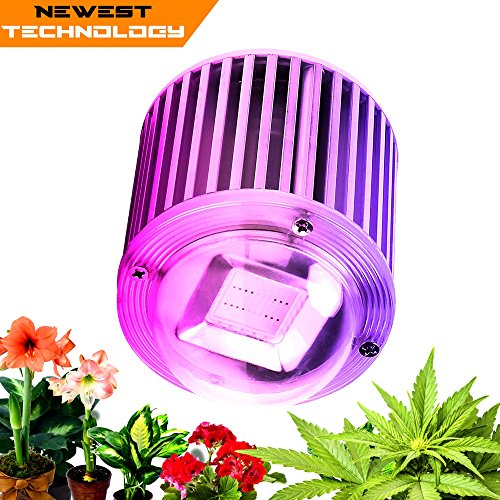 Newest Led Grow Lights - 6
