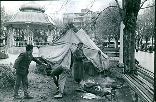 Public Tent - 4