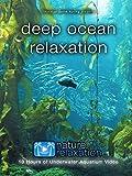 Deep Ocean Relaxation: 10 Hours of Underwater Aquarium Video