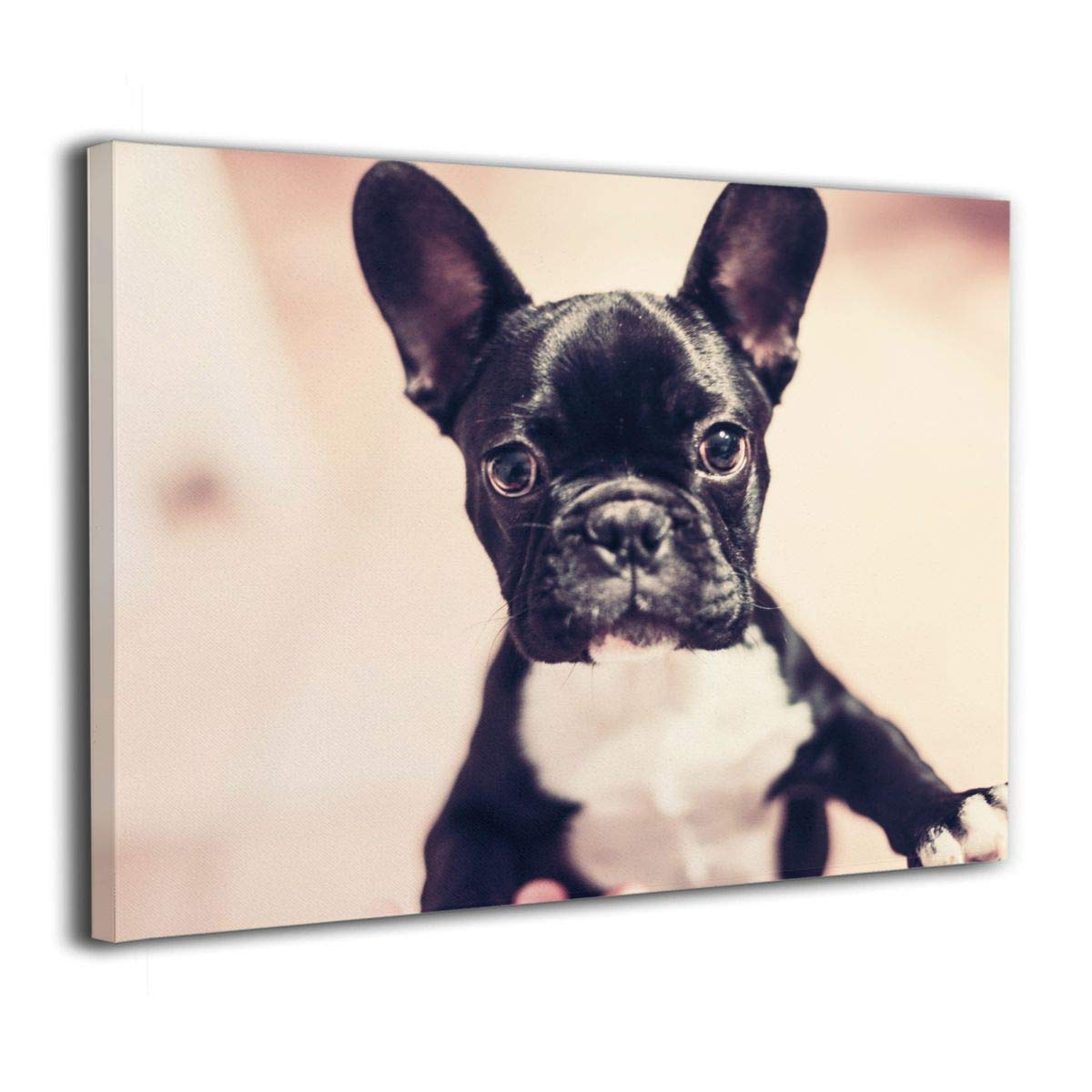 BLI Cute French Bulldog Home Decor Canvas Painting 16x20 Inch Kitchen Decorations Wall Picture Abstract Artwork for Bathroom Living Anywhere