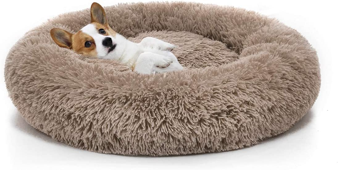 Dog Bed Comfortable