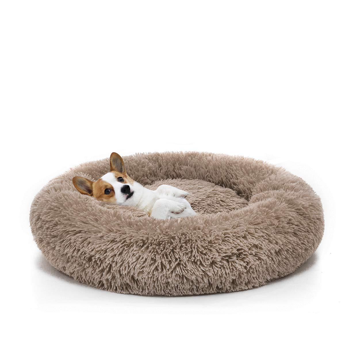 Orthopedic Dog Bed Comfortable Donut Cuddler Round Dog Bed Ultra Soft Washable Dog and Cat Cushion Bed (23''x 23''x 5'') (Brown)