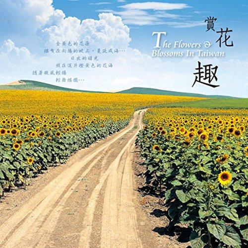 The Graceful Summer Lotus