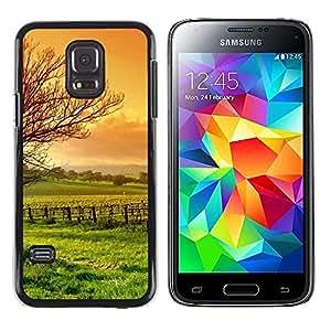 TopCaseStore / la caja del caucho duro de la cubierta de protección de la piel - Nature Beautiful Forrest Green 3 - Samsung Galaxy S5 Mini, SM-G800, NOT S5 REGULAR!