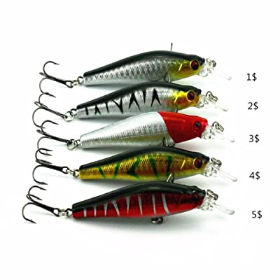 5pcs/set Plastic Minnow Fishing Lures Floating Rattles Bass Crankbait 8.5cm/3.15inch 8.9g: Toys & Games