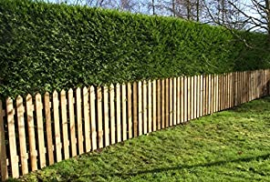 High Ruby Pointed Top Picket Pales 600mm Treated Wooden Fencing 2ft 50