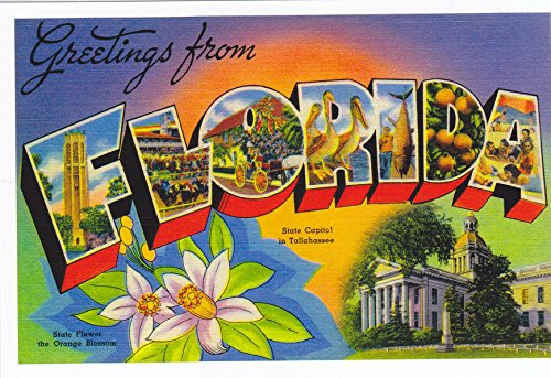 (STATES2FLO - FLORIDA 1930's - 1940's Sunshine State, STATE FLOWER the ORANGE BLOSSOM, STATE CAPITAL in TALLAHASSEE FLORIDA - A U.S. State POSTCARD .. from HibiscusExpress )