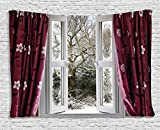 Ambesonne House Decor Collection, Open Window With View To A Snowy Winter Scene Pattern Curtain Drapes Frosty, Bedroom Living Room Dorm Wall Hanging Tapestry, 60W X 40L Inch