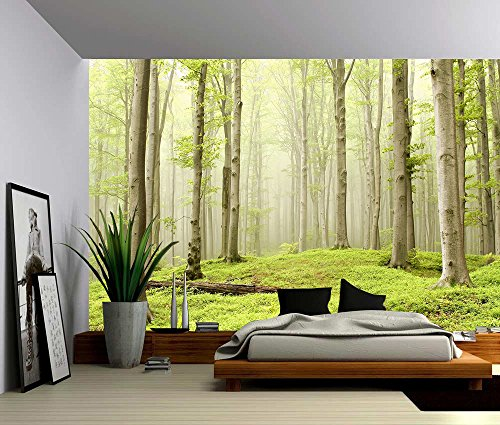 Picture Sensations Canvas Texture Wall Mural, Landscape