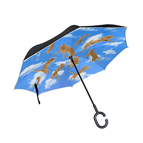 173547260d14 Amazon.com : ALAZA Double Layer Inverted Sky Cat Cloud Umbrella Cars ...
