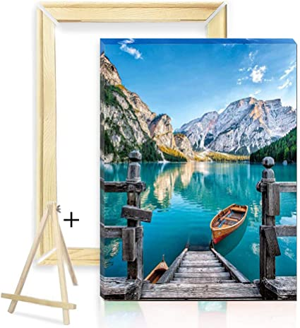 Paint by Numbers Kit for Adults Beginner 16X20 Inch