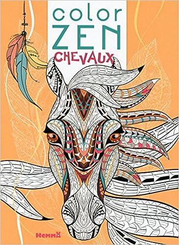 Coloriage Cheval Zen.Color Zen Chevaux De Reve Amazon Fr Collectif Livres