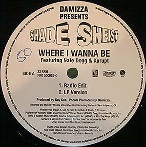 Shade Sheist Nate Dogg Kurupt Where I Wanna Be Vinyl