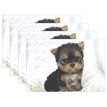 Amazon HoDeColor Teacup Yorkshire Terrier Puppy Placemats Table