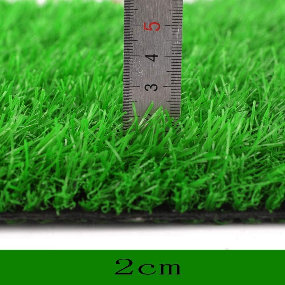 人工芝 2センチ夏草シミュレーション芝生、暗号化プラスチック人工フェイクターフ屋内グリーン装飾バルコニー屋外サッカーフィールドカーペット (Size : 2 m X 5 m)