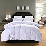 Topsleepy 75% White Goose Down Comforter Queen/Full Size 100% Cotton Shell Down Proof-Solid White Hypo-allergenic (Queen 88-by-88 inch)