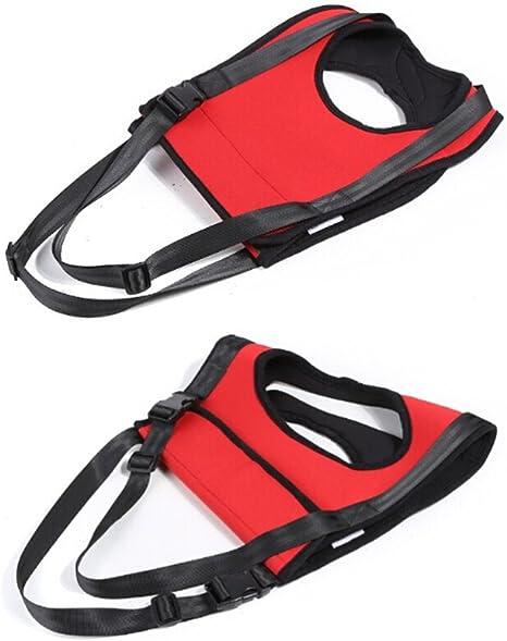 Fuloon Rojo Medical – Rear Carrier/Levantamiento de elevación ...