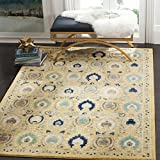 Safavieh Evoke Collection EVK251B Contemporary Gold Ivory Area Rug (8′ x 10′)