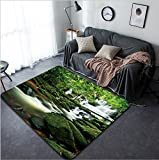 Vanfan Design Home Decorative 85015816 waterfall in thai national park In the deep forest on mountain Modern Non-Slip Doormats Carpet for Living Dining Room Bedroom Hallway Office Easy Clean Footclo