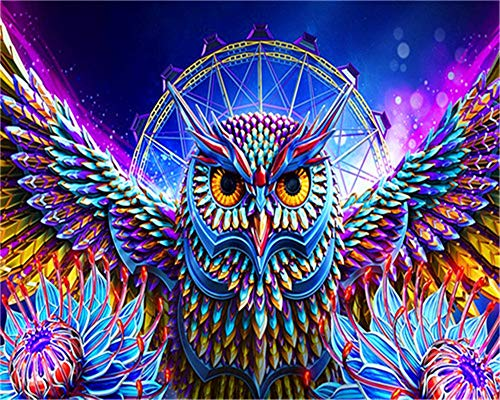 CaptainCrafts New Paint by Numbers Kits for Adults Beginner Children Kids DIY Pre-Printed Linen Canvas Oil Painting Home House Decor Gift 16x20 inch - Glowing Colored owl (Frameless) (Canvas On Owl)