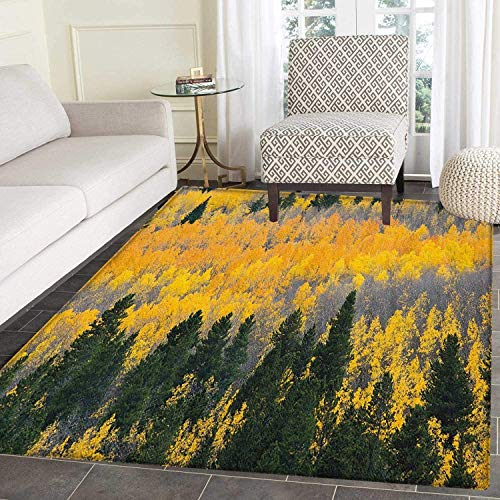Fall Area Silky Smooth Rugs Colorful Aspen Forest in Colorado Rocky Mountains Western Wilderness USA Theme Floor Mat Pattern 3'x5' Green Yellow Grey