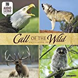 Call of the Wild 2018 Calendar: Includes Qr Audio Code