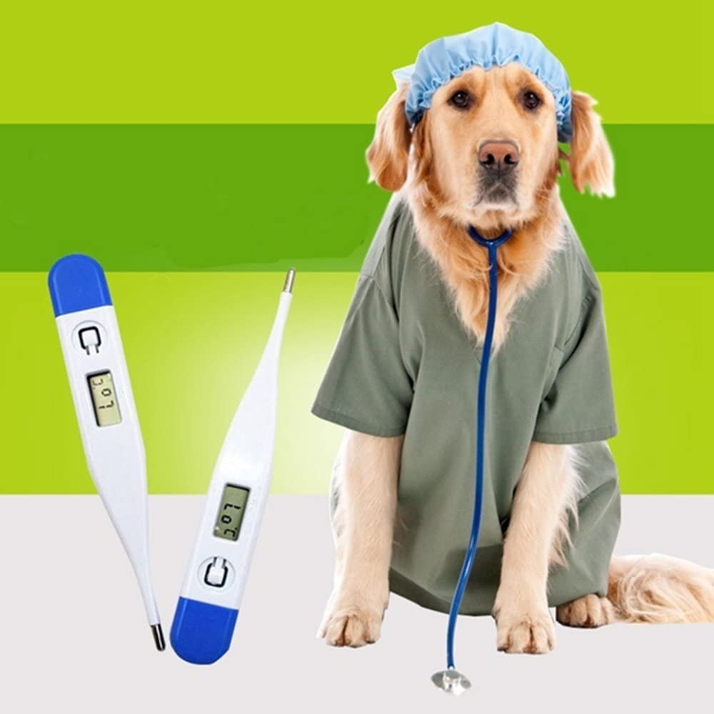2pcs Veterinary Thermometer Digital Thermometer for Pets Dogs Cats 61xr2B5Q4OOL