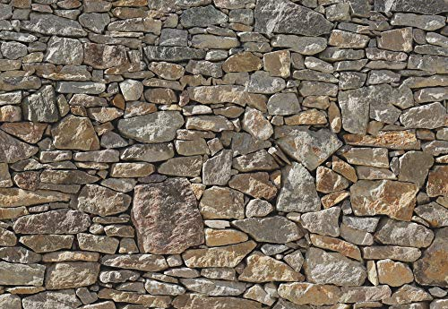 Stone Wall Huge Wall Mural 8-727 by Komar 12 Feet Wide x 8 Feet 4 Inch High Photo Mural by Brewster (Image #1)