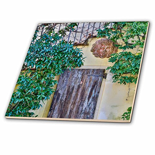 3dRose Danita Delimont - Architecture - Italy, Radda in Chianti, Old Doorway - 8 Inch Glass Tile (ct_277605_7) by 3dRose
