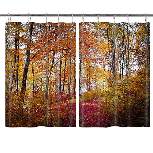 JAWO Autumn Forest Kitchen Curtains, Natural Landscape Fall Red and Yellow Leaves Kitchen Decorations Window Drapes, Window Treatment Sets Curtains 2 Panels with Hooks, 55X39Inches (Curtains Kitchen Fall)