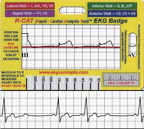 R-Cat EKG Badge