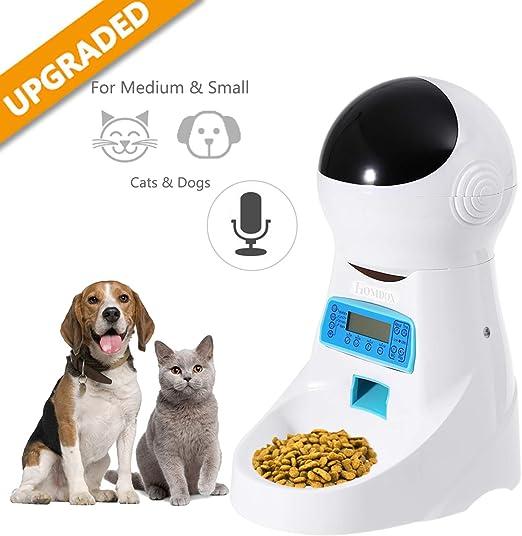 Alimentador automático para Gatos, dispensador de Comida para ...