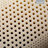 Z 100% Natural Talalay Latex Zoned Pillow - Queen - Low Loft, Firm