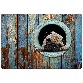 HUGS IDEA Funny Pug Dog Indoor/Outdoor/Front Welcome Door Mat Non-Slip Floor Rug for Kitchen Bedroom