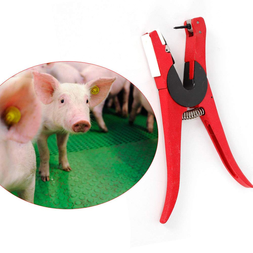 SHZICMY Ear Tag Plier, Rotatable Ear Tag Tagger Plier Exclusive Animal Ear Tag Wear Tool 90 Degrees Applicator Puncher Tagger for Livestock Pig Sheep Goat Cattle (USA Stock) by SHZICMY